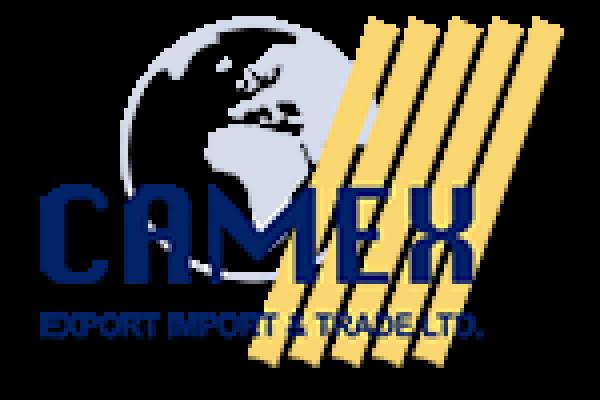 Cameks  Logo